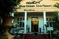 Blue Ocean Dive Resort, Sardine Run Accommodation