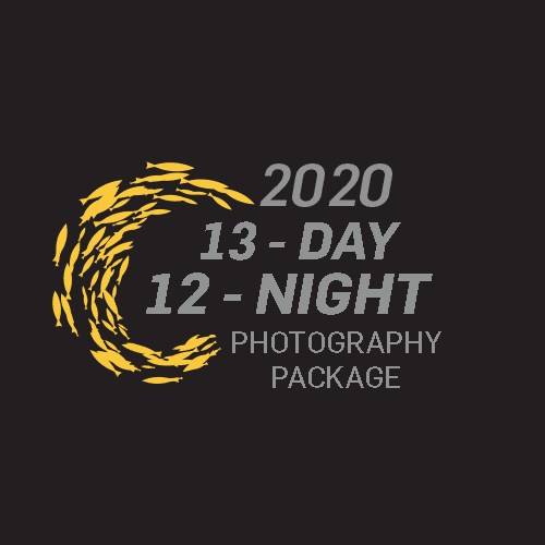 2020 Photography Package to join Sardine Run South Africa